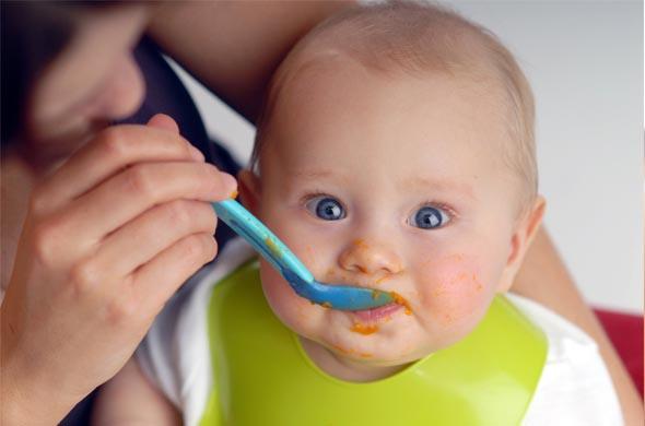 Recette de canard et légumes vapeur pour bébé