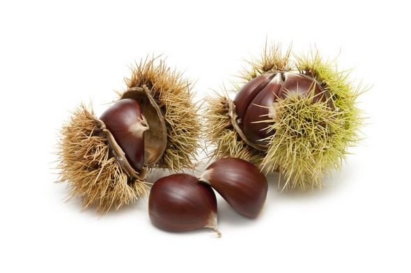 Chestnuts-baby-food