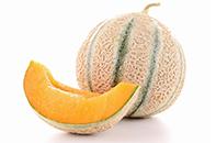 dossier alimentaire melon pour bébé