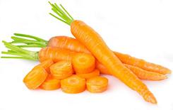 la carotte pour bébé