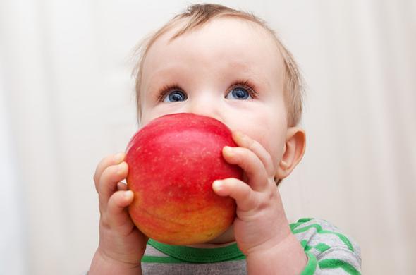 semaine à la pomme pour bébé
