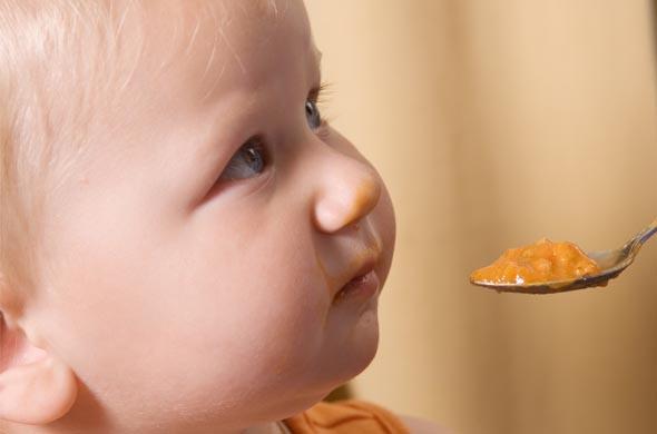 L'intemporelle pomme poire et coing
